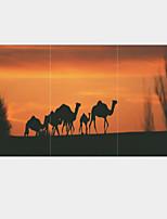 Estampados de Arte Animal Pastoril,3 Painéis Horizontal Impressão artística Decoração de Parede For Decoração para casa
