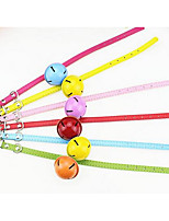 Collar Safety Training Flower Nylon Rainbow