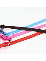 Collar Safety Training Flower Nylon Rainbow