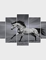 Impression sur Toile Animal Moderne,Cinq Panneaux Toile Toute Forme Imprimer Art Décoration murale For Décoration d'intérieur