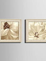 E-HOME® Framed Canvas Art White Petals Flowers Framed Canvas Print One Pcs