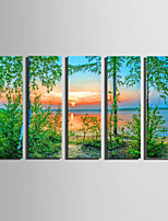 E-HOME Stretched Canvas Art A Summer Sunset Decoration Painting Set Of 5