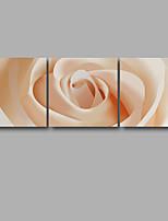 Aufgespannte Leinwandrucke Blumenmuster/Botanisch Modern,Drei Paneele Leinwand Horizontal Druck-Kunst Wand Dekoration For Haus Dekoration