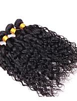 Cabelo Humano Ondulado Cabelo Vietnamita Onda de Água 12 meses 4 Peças tece cabelo