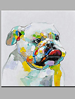 Hand-Painted Abstract Animal Modern One Panel Canvas Oil Painting For Home Decoration