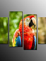 Photographic Print Animal Modern,Four Panels Canvas Horizontal Print Wall Decor For Home Decoration