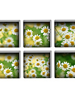 Chrysanthemum 3D Bathroom Non-Slip Stickers The Floor Tile Individuality Decorative Stickers Light in the Dark