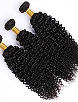 Natural Color Hair Weaves Indian Texture Kinky Curly 12 Months 3 Pieces hair weaves