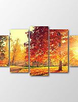 Canvas Print Landscape Modern Landscape Autumn Five Panels Canvas Horizontal Print Wall Decor For Home Decoration