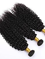 Tissages de cheveux humains Cheveux Péruviens Très Frisé 12 mois 3 Pièces tissages de cheveux