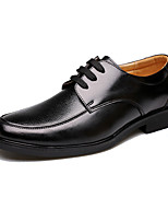 Men's Oxfords Spring Summer Fall Winter Comfort Cowhide Outdoor Office & Career Party & Evening Casual Lace-up Black