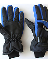 Ski Gloves Winter Gloves / Sports Gloves Unisex Activity/ Sports Gloves Keep Warm / Anti-skidding / Snowproof / Wearable / Lightweight