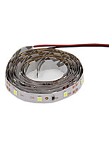 ® Shenmeile  Flexible LED Light Strips 200 lm DC12 2m 120 leds Warm White White Red Blue Green
