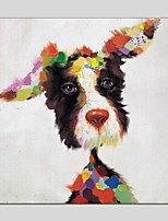 Oil Paintings Cool Dog Style Canvas Material With Wooden Stretcher Ready To Hang Size60*60CM and 70*70CM .