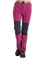 Femme Pantalon/Surpantalon Camping / Randonnée Pêche Hors piste Séchage rapide Pare-vent Vestimentaire Anti-transpiration Printemps Eté