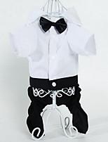 Собаки Брюки Одежда для собак Лето Полоски Милые Мода Черный