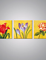 Stretched Canvas Flower Paintings Modern  Canvas Art for Wall Decoration