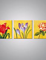 Impression sur Toile A fleurs/Botanique Moderne Style européen,Trois Panneaux Toile Horizontale Imprimer Art Décoration murale For