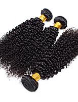 Tissages de cheveux humains Cheveux Birmans Très Frisé 12 mois 3 Pièces tissages de cheveux
