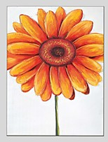 Oil Paintings Flower Style Canvas Material With Wooden Stretcher Ready To Hang Size60*90CM and 50*70CM .