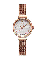 Women's Fashion Watch Quartz Water Resistant / Water Proof Alloy Band Casual Silver Brown Gold Rose Gold