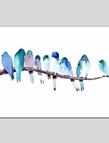 Oil Paintings Bird Painting Style Canvas Material With Wooden Stretcher Ready To Hang Size60*90CM and 50*70CM .