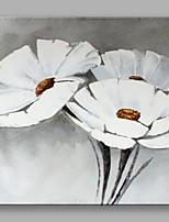 Ручная роспись Цветочные мотивы/ботаническийЦветы 1 панель Холст Hang-роспись маслом For Украшение дома