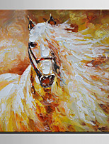 Mini Size E-HOME Oil painting Modern The White Horse Pure Hand Draw Frameless Decorative Painting