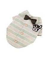 Tee-shirt Vêtements pour Chien Mode Décontracté / Quotidien Rayure Vert Bleu Rose