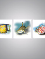 Stretched Canvas Prints Fish Picture Printed on Canvas Contemporary Animal Art for Wall Decoration