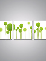 Stretched Canvas Prints Abstract Green Flower Print on Canvas Contemporary Nature Art for  Home Decoration