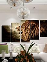 Художественная печать Животное Modern,5 панелей Горизонтальная С картинкой Декор стены For Украшение дома