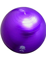 Fitness Ball/Yoga Ball Yoga Durable Life EVA-