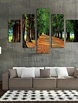 Estampados de Arte Paisagem Pastoril,5 Painéis Horizontal Estampado Decoração de Parede For Decoração para casa