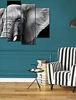 Art Print Animal Modern Four Panels Horizontal Print Wall Decor For Home Decoration