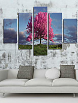 Estampados de Arte Paisagem Clássico,5 Painéis Horizontal Estampado Decoração de Parede For Decoração para casa