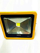 1pcs 30W Yellow Color Ultrathin LED Flood Light Waterproof IP65 Floodlight Spotlight Outdoor Lighting AC85-265V