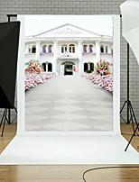 Vinyl Photo Backdrop Child Studio Villa Photography Background Baby 5x7ft