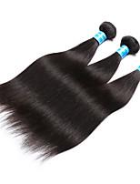 Tissages de cheveux humains Cheveux Malaisiens Droit 12 mois 3 Pièces tissages de cheveux
