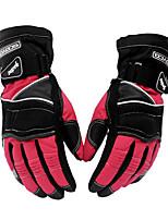 Scoyco MC15 Motorcycle Gloves Winter Warm Waterproof Windproof Sports Racing gloves Moto Protective Gear