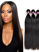 8A Remy Brazilian Virgin Straight Human Hair 3 Bundles Unprocessed 100% Human Hair 300g/Set