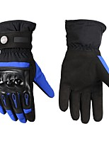 Sports Gloves Unisex Cycling Gloves Bike Gloves Keep Warm Windproof Wearproof Protective Full-finger Gloves Velvet SpongeCycling