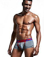 Masculin Sportif Solide Sous-vêtements Ultra Sexy Boxers
