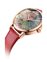 Women's Fashion Watch Bracelet Watch Japanese Quartz Water Resistant / Water Proof Leather Band Casual Black White Blue Red Pink