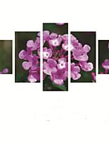 Impression d'Art A fleurs/Botanique Pastoral,Cinq Panneaux Horizontale Imprimer Art Décoration murale For Décoration d'intérieur