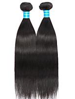 Vinsteen Brazilian Virgin Hair Straight 2 Pieces Short Human Hair Weaves Double Weft Hair Extensions Silky Natural Human Hair Bundles