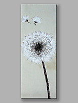 IARTS®Hand Painted Dandelion Flowers Oil Painting with Stretched Frame For Home Decoration