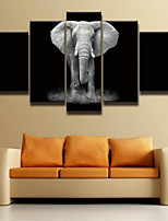 Художественная печать Животное Modern,5 панелей Горизонтальная Декор стены For Украшение дома