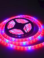 30W faixa de luz planta 2400 lm AC100-240 V 5 m 300 leds Multicolorido