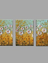 Hand Painted Oil Painting Modern Knife White Chrysanthemum Flower 3 Piece/set Wall Art with Stretched Framed Ready to Hang